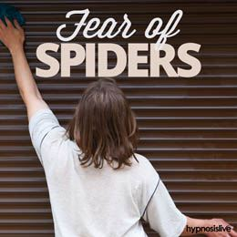 Fear of Spiders Cover