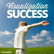 Visualization Success Cover